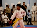 2013-maharaja-jassa-singh-sports-tournament-95