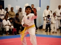 2013-maharaja-jassa-singh-sports-tournament-96